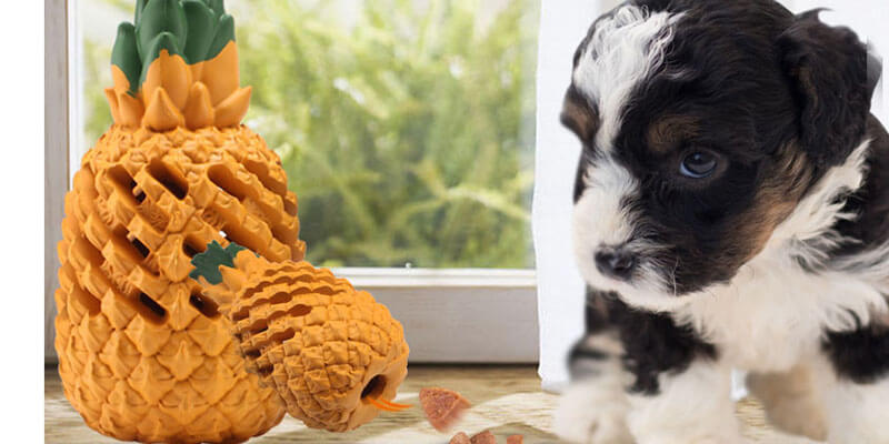 Pineapple-shaped-dog-toys-with-treats