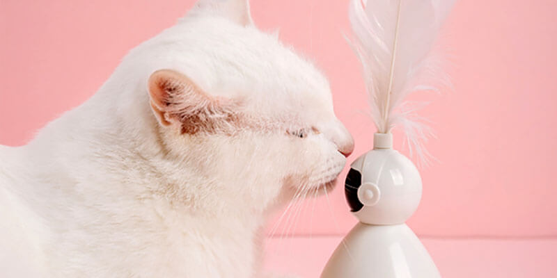 automatic rotating laser cat toy