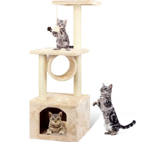 cat condo for large cats