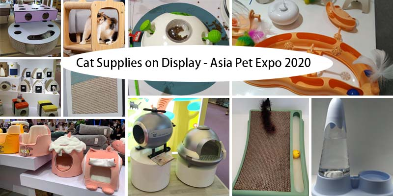 cat supplies on display asia pet expo 2020