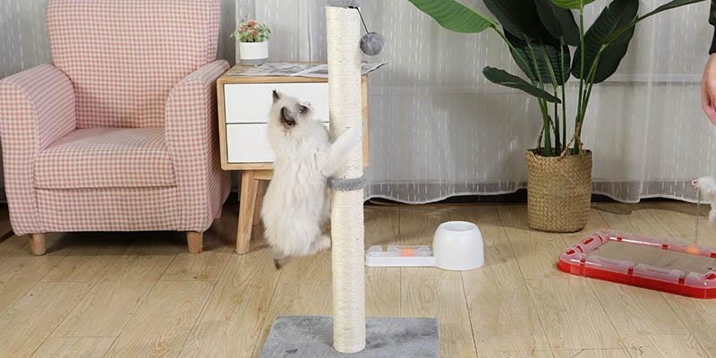 cat tree scratching post